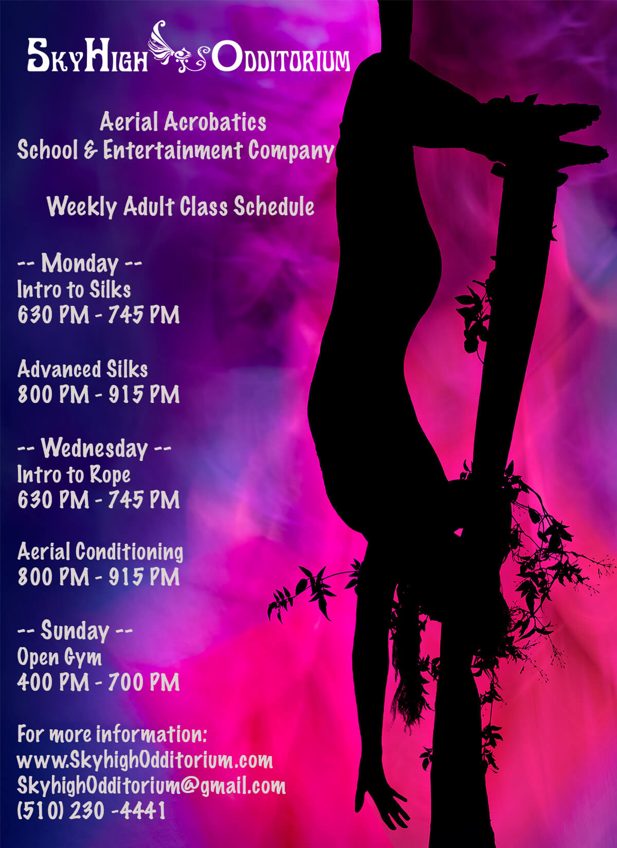 Adult Aerial Class Schedule